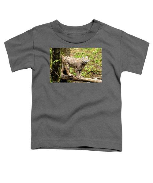 Wild Bobcat In Mountain Setting Toddler T-Shirt