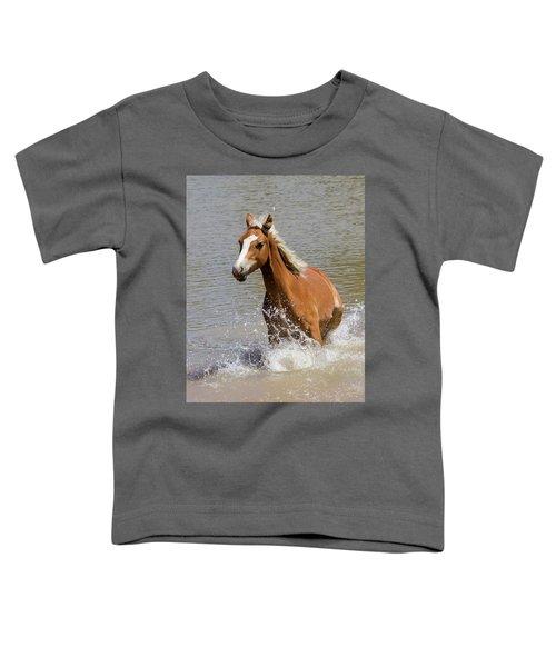 Wild Horse Splashing At The Water Hole Toddler T-Shirt