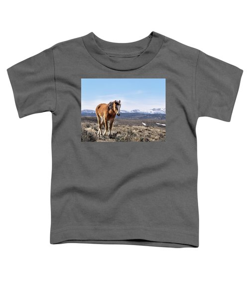 Wild Mustang Filly Of Sand Wash Basin Toddler T-Shirt
