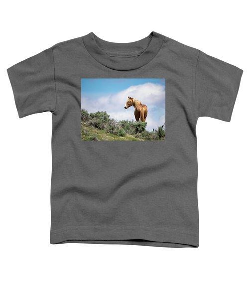 Wild Mustang Stallion Of Sand Wash Basin Toddler T-Shirt