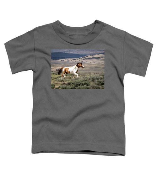Wild Mustang Stallion On The Move In Sand Wash Basin Toddler T-Shirt