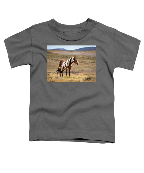 Wild Mustang Stallion Picasso Of Sand Wash Basin Toddler T-Shirt