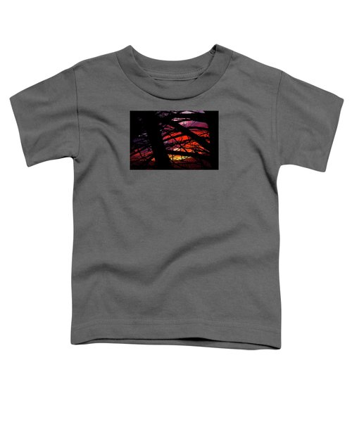 Wildlight Toddler T-Shirt