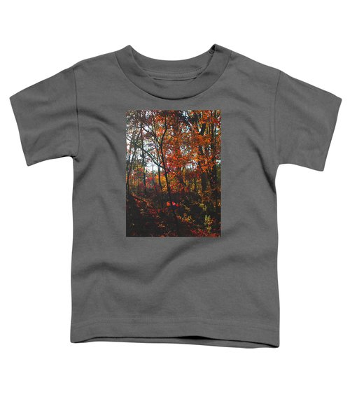 Wildwood Missouri Toddler T-Shirt