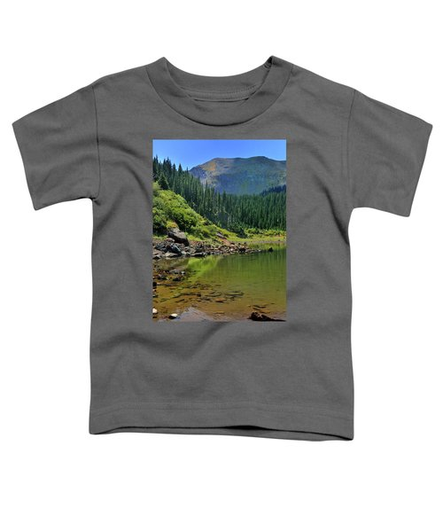 Williams Lake Toddler T-Shirt