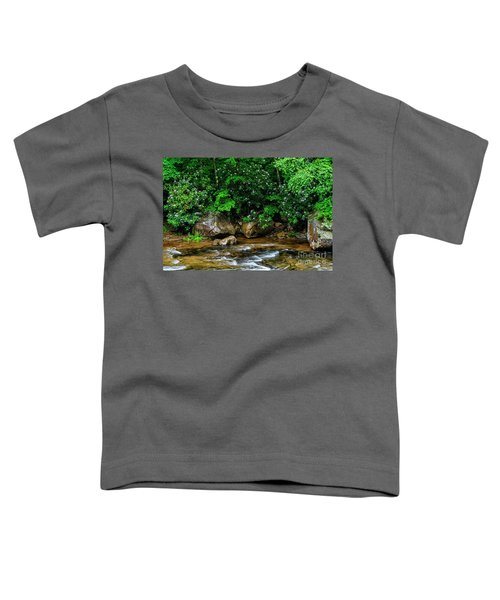 Williams River And Rhododdendron Toddler T-Shirt