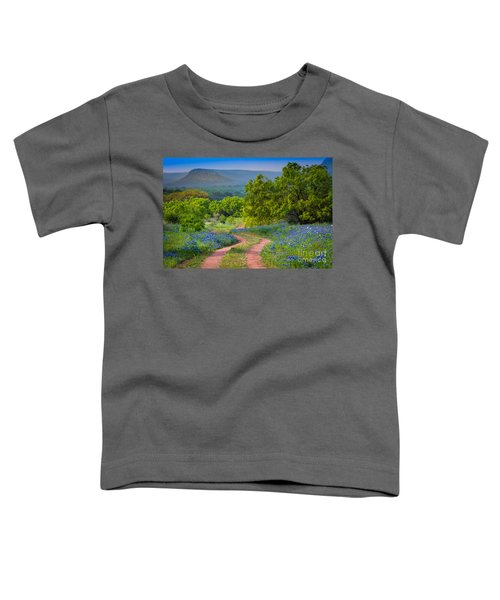 Willow City Road Toddler T-Shirt