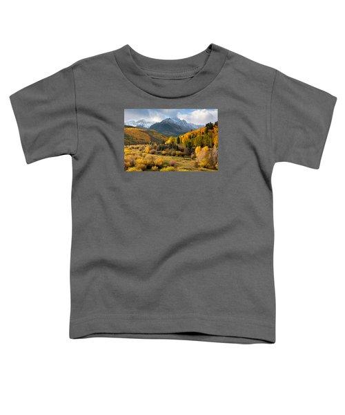 Willow Swamp Toddler T-Shirt