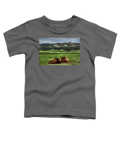Wind Cave Bison Toddler T-Shirt