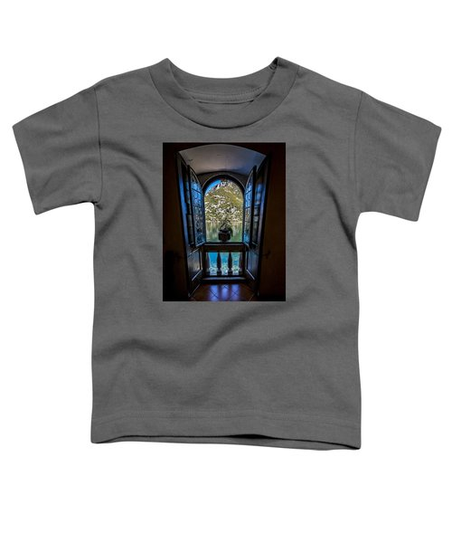 Window To The Lake Toddler T-Shirt