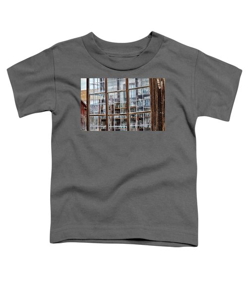 Window To The Past Toddler T-Shirt