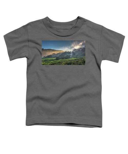 Windswept Trees On The Oregon Coast Toddler T-Shirt