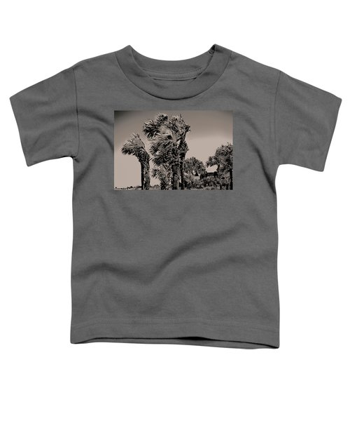 Windy Day At Beach Toddler T-Shirt