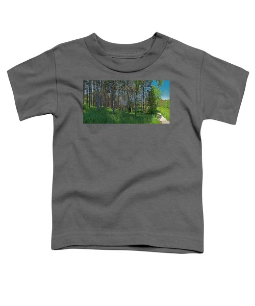 Wingate Prairie Veteran Acres Park Pines Crystal Lake Il Toddler T-Shirt