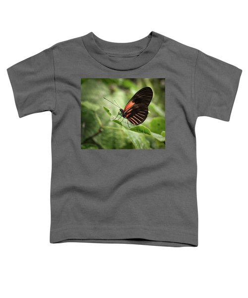 Wings Of The Tropics Butterfly Toddler T-Shirt