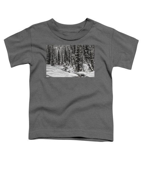 Winter Alpine Creek II Toddler T-Shirt