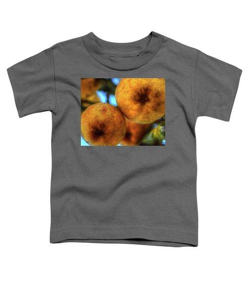 Winter Apples 2 Toddler T-Shirt