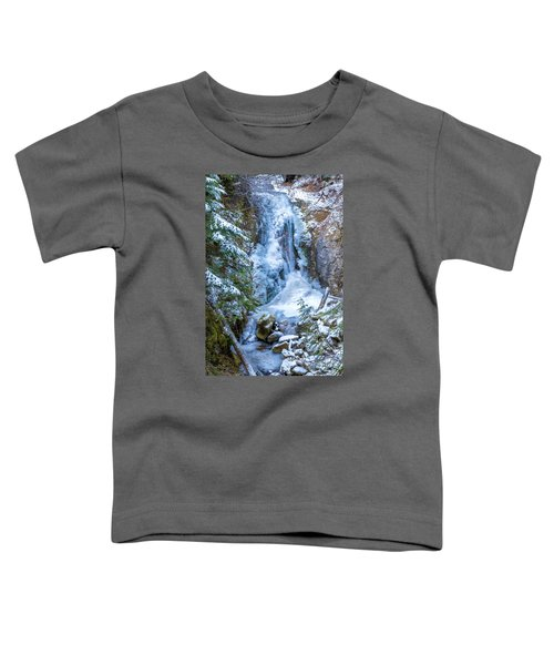 Winter Approaching Toddler T-Shirt