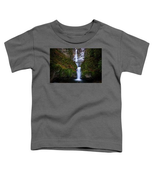 Winter At Multnomah Falls Toddler T-Shirt