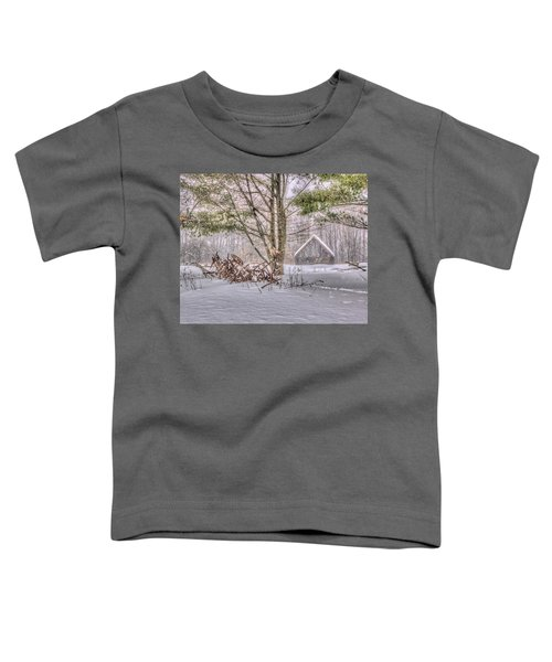 Winter At The Woods Toddler T-Shirt