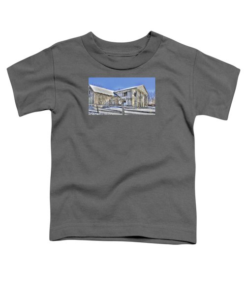Winter Barn 2 Toddler T-Shirt