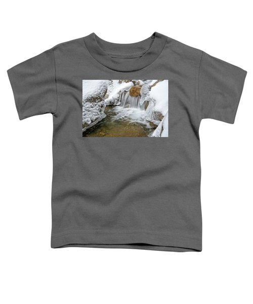 Winter Cascade Nh Toddler T-Shirt