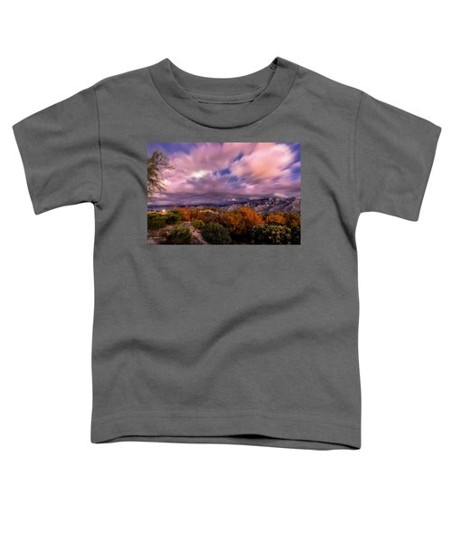 Winter Colors 25 Toddler T-Shirt