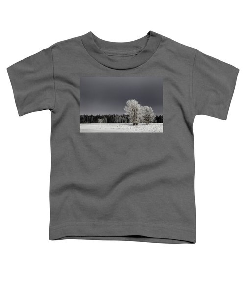 Winter Dreamscape Toddler T-Shirt
