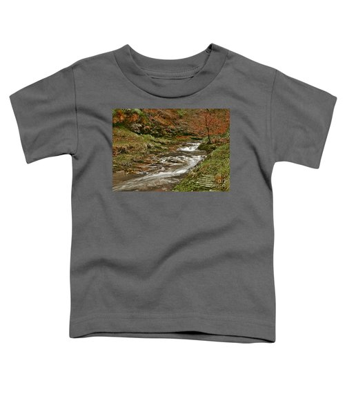 Winter Forest Stream Toddler T-Shirt