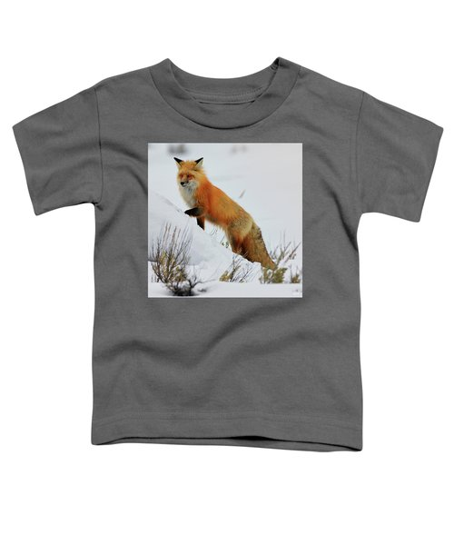 Toddler T-Shirt featuring the photograph Winter Fox by Greg Norrell