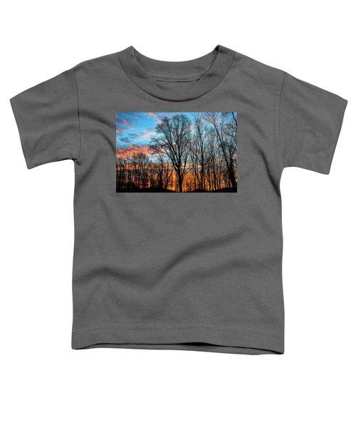 Winter Glory Toddler T-Shirt