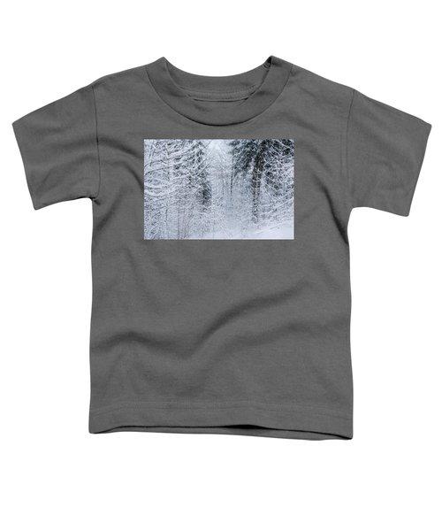 Winter Glow- Toddler T-Shirt