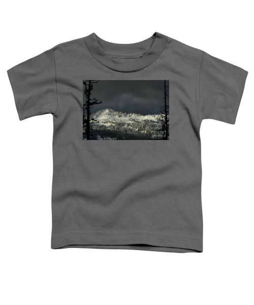 Winter In North Cascades Toddler T-Shirt