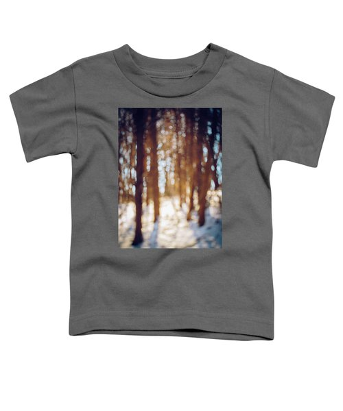 Winter In Snow Toddler T-Shirt