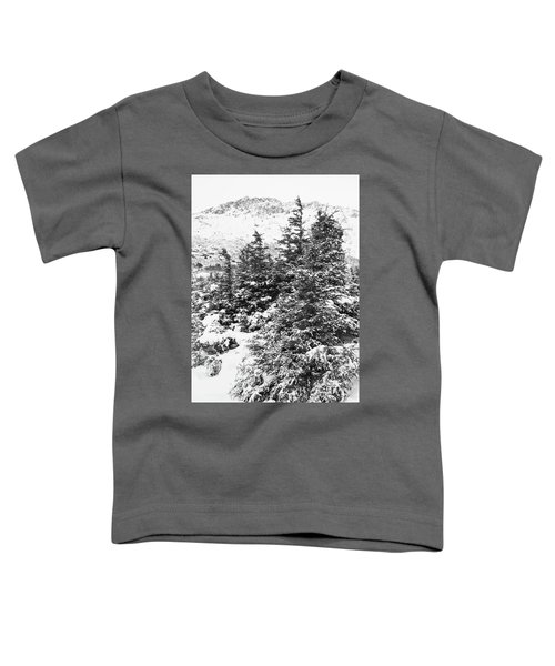 Winter Night Forest M Toddler T-Shirt