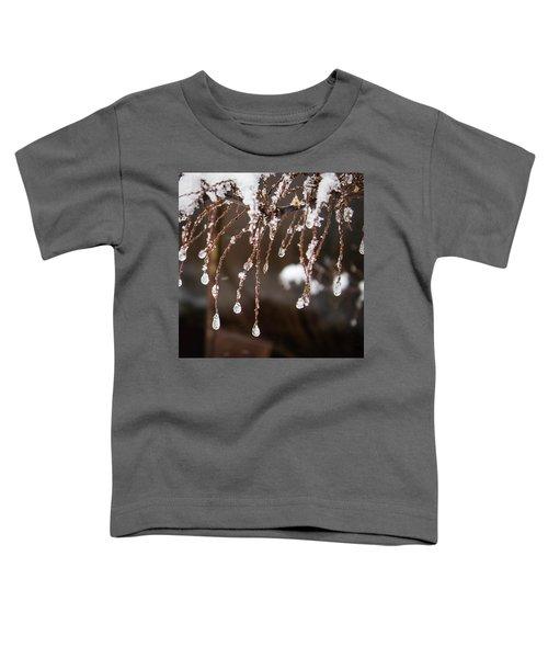 Winter Ornament Toddler T-Shirt