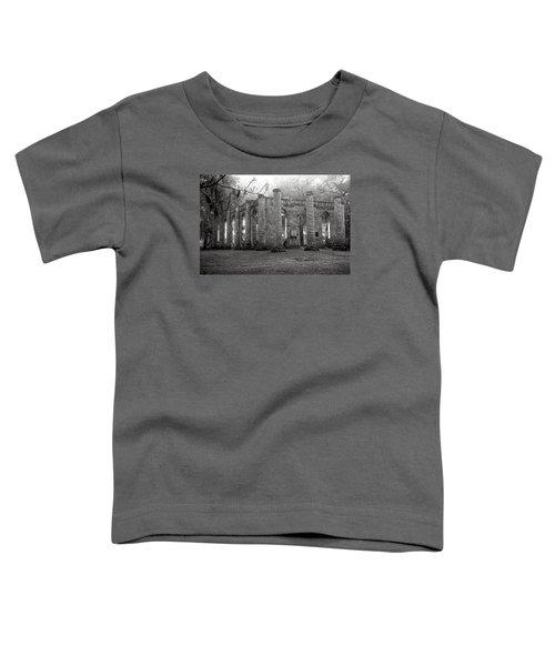 Winter Ruins Toddler T-Shirt