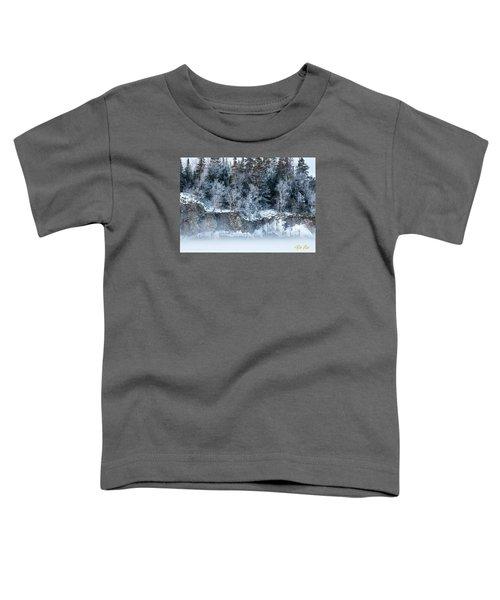 Winter Shore Toddler T-Shirt
