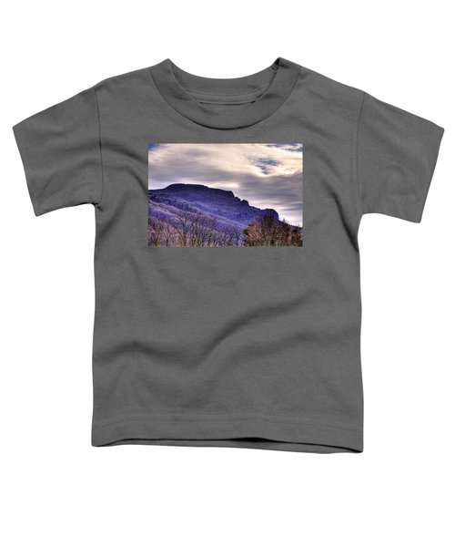 Winter's Sleep Toddler T-Shirt