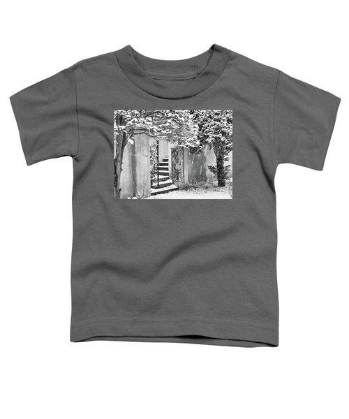 Winter Steps At The Vanderbilt In Centerport, Ny Toddler T-Shirt