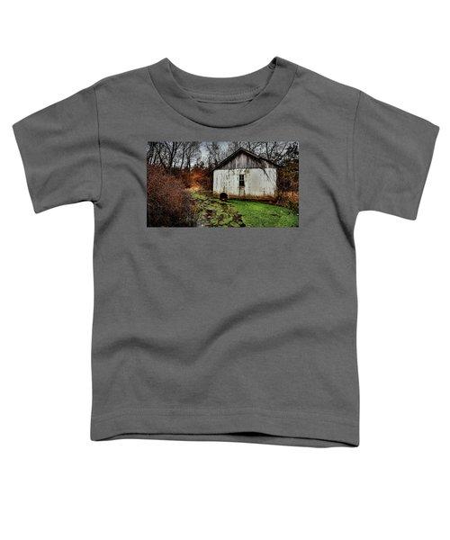 Winter Stream Toddler T-Shirt
