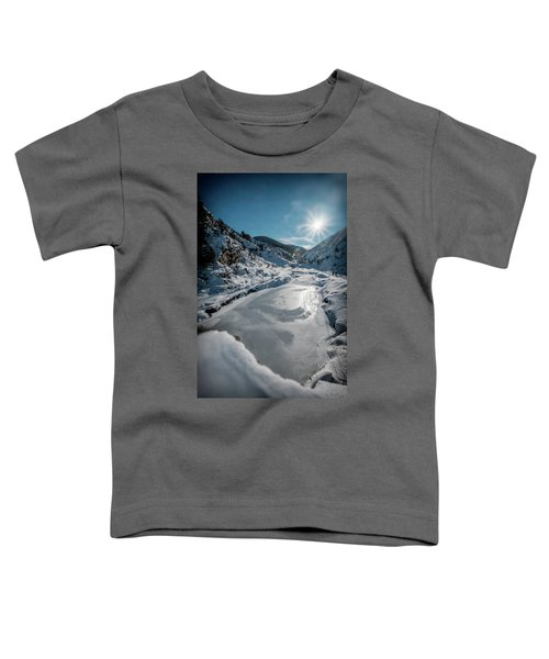 Winter Sun Toddler T-Shirt