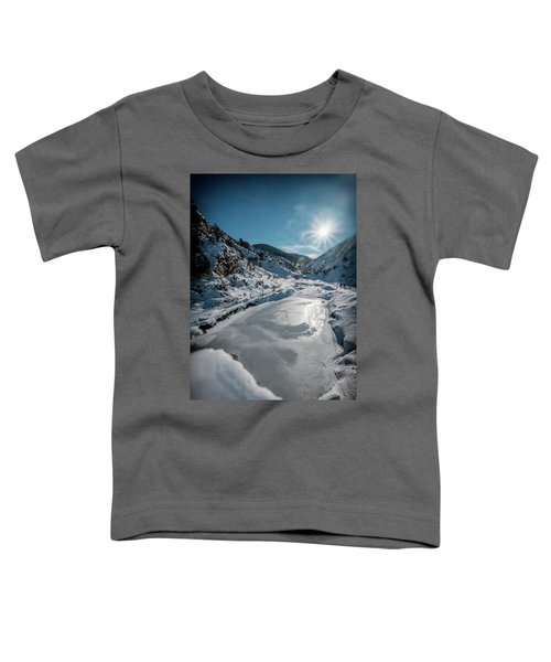 Winter Sun Toddler T-Shirt