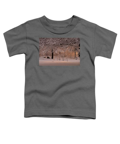 Winter Sunset Ft Hill Park Toddler T-Shirt