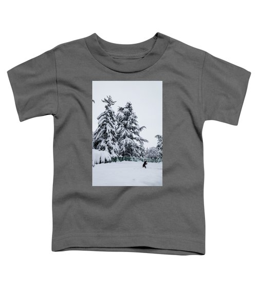 Winter Trekking-2 Toddler T-Shirt