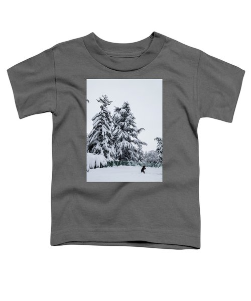 Winter Trekking-2 Toddler T-Shirt