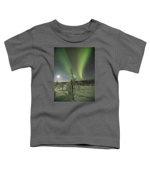 Winter Wonderland Aurora Toddler T-Shirt
