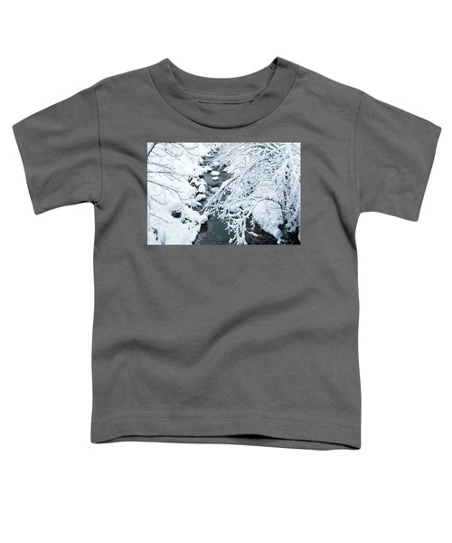 Winters Creek- Toddler T-Shirt