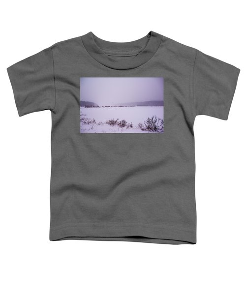 Winter's Desolation Toddler T-Shirt