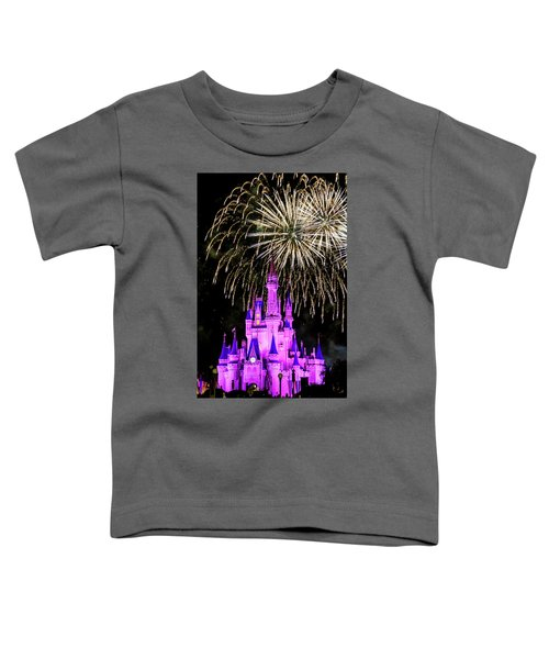 Wishes Fireworks Disney World  Toddler T-Shirt